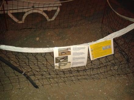 Caretta Nest am Strand - Strand Side - Kumköy