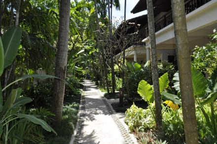 Weg zum Pool & Restaurant - Hotel Baan Chaweng Beach Resort & Spa