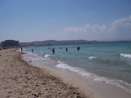 Strand Ilica - Strand Ilica