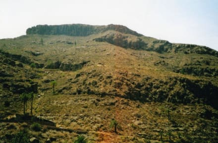 Aussicht Palmitos Park - Palmitos Park