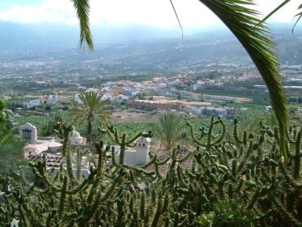Ausflug El Monasterio (Am Berghang) - Restaurant Mesón El Monasterio