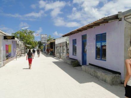 Einheimische Insel - Lankan Manta Point
