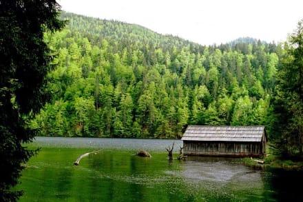 Toplitzsee - Toplitzsee
