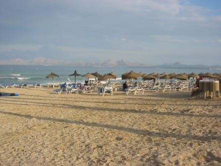 Beach/Coast/Harbor - Alcudia Beach