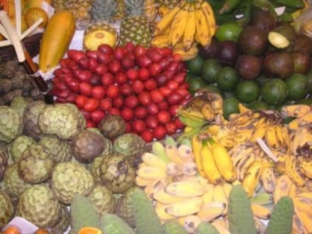 Stadtmarkt in Funchal - Markthalle Mercado dos Lavradores