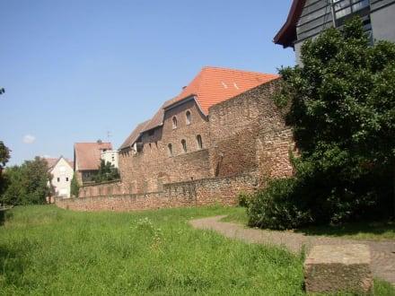 Stadtmauer an der Bleiche - Stadtführung Ladenburg