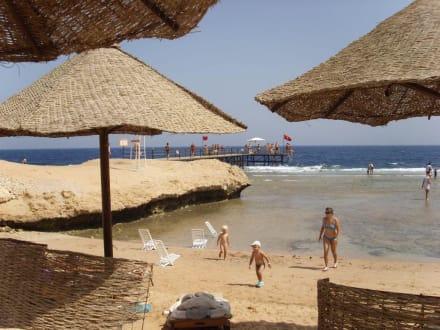 Hotelstrand - Tauchbasis Blue Water Dive Resort Hurghada
