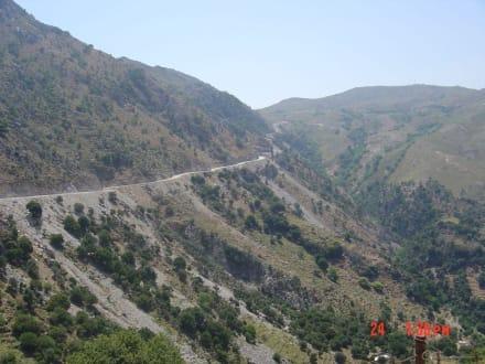 Straße von Kalikrates nach Westen - Tour & Ausflug