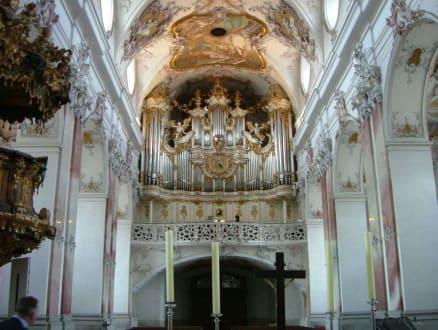 Abtei Amorbach - Benediktinerabtei Amorbach