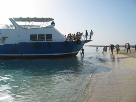September 2005 Giftun Insel - Giftun / Mahmya Inseln