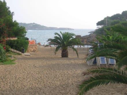 Strand - Caló des Pou