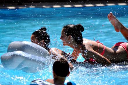 Swimming Pool Fun -