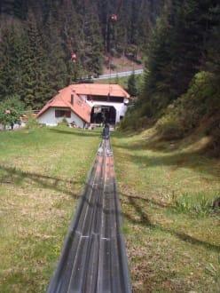 Lift der Sommerrodelbahn - Freizeitpark Seewald Enzklösterle Poppeltal