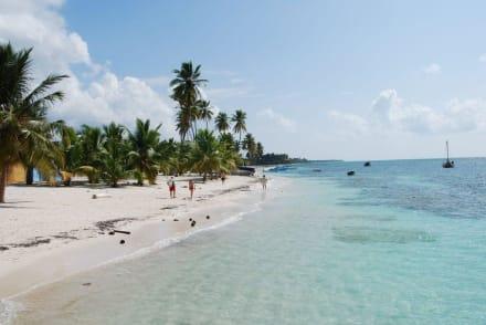 Strand auf Saona - Isla Saona