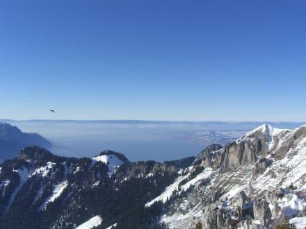 Berg/Vulkan/Gebirge - Skigebiet Leysin