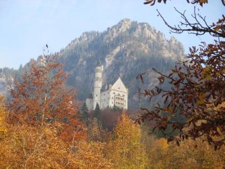 Herbstpanorama am Disneyschloss - Schloss Neuschwanstein