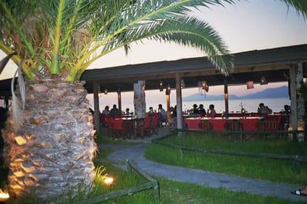 TamTam Bar - Tam Tam Beach Bar