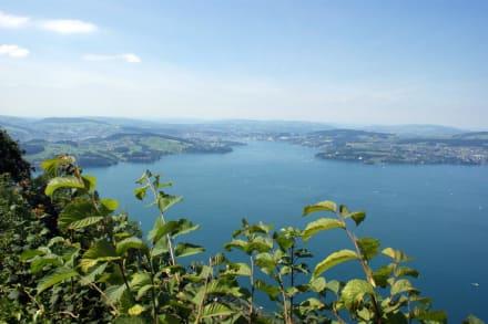 Ausblick - Bürgenstock Resort Lake Lucerne - Parkhotel (geschlossen)