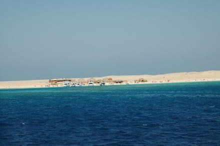 Tauch- und Schnorcheltour - Giftun / Mahmya Inseln