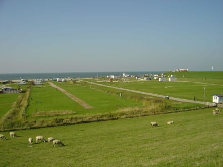 Strand mit Campingplatz in Tossens - Deich