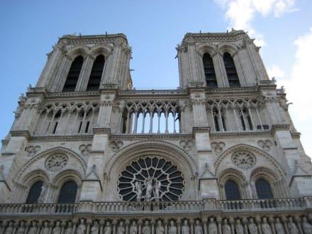 Blick nach oben - Notre Dame