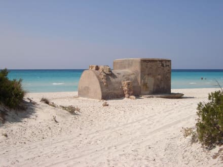 Stranddetail - Platja Es Trenc