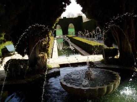 Alhambra - Alhambra