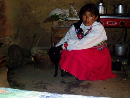 Eiheimische mit Schaf - Stadt Puno