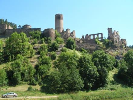 Unterwegs auf der Burgruine Kollmitz - Burgruine Kollmitz Raabs