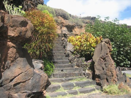 Treppe im Garten - Jameos del Agua Cesar Manrique