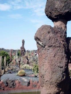 Kaktus Garten - Jardin de Cactus / Kaktusgarten Guatiza
