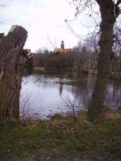 Das Kloster Marienrode mit dem Fischteich - Kloster Marienrode