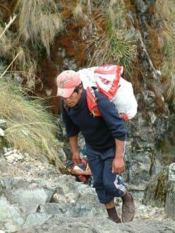 Am Inka-Trail - Inka Trail