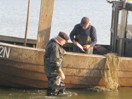 Fischer von Ahlbeck - Strand Ahlbeck