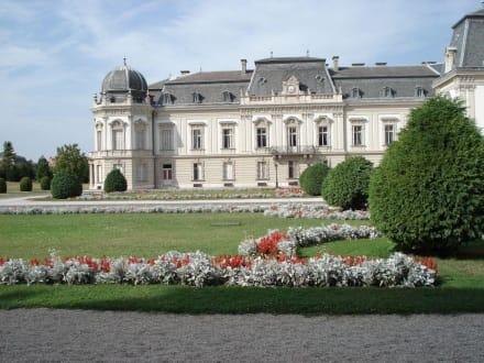 Schloß Keszthely - Schloß Festetics