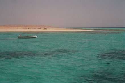 Insel im glasklaren Meer - Giftun / Mahmya Inseln