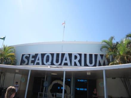 Eingangsbereich - Seaquarium