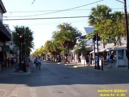 Duval Street in Key West - Duval Street