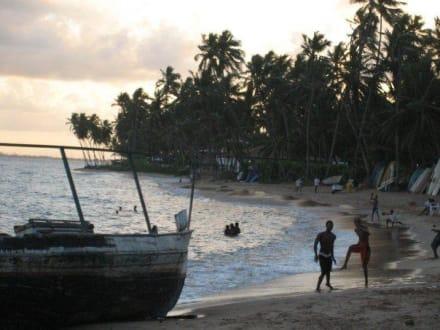 Praia do Forte - Strand Praia do Forte