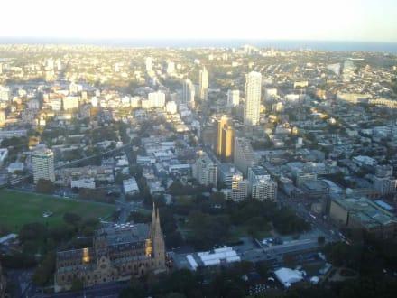 Sydney Tower - Sydney Tower