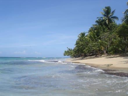 einfach nur traumhaft - Playa Esmeralda - Punta del Rey