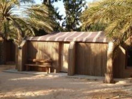 Wüsten & Camptouren - dune-desert-discover