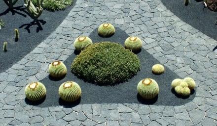 Kaktusgarten 5 - Jardin de Cactus / Kaktusgarten Guatiza