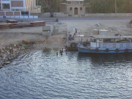 Leben am Fluß - Nil