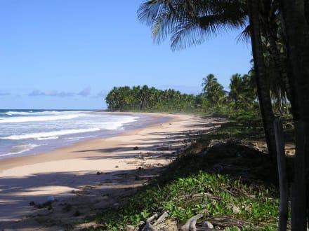 Playa Grande - Playa Grande
