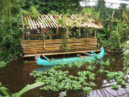 Boot - Orchideenhof in Luttelgeest