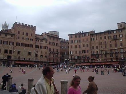 Piazza del Campo - Piazza del Campo