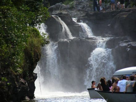 Am Wasserfall - Grand River South East Waterfall