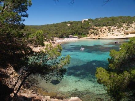 Strand/Küste/Hafen - Hafen Palma de Mallorca