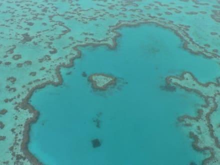 Hubschrauberflug über das Herz-Riff (Heart reef) - Great Barrier Reef Diving